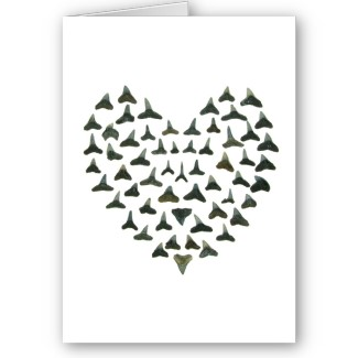Shark Tooth Valentine Notecard by Quercus Design