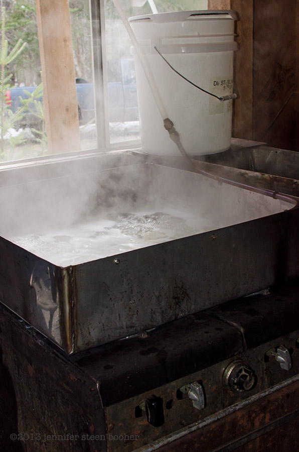 Making maple syrup in Maine