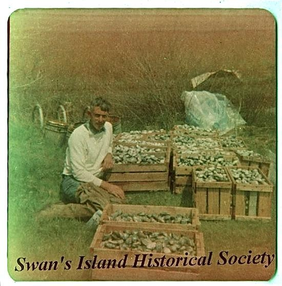 Courtesy Swans Island Historical Society