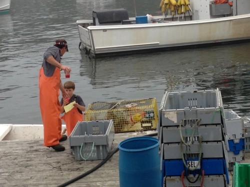 Father and Son New Harbor Maine Lobstering